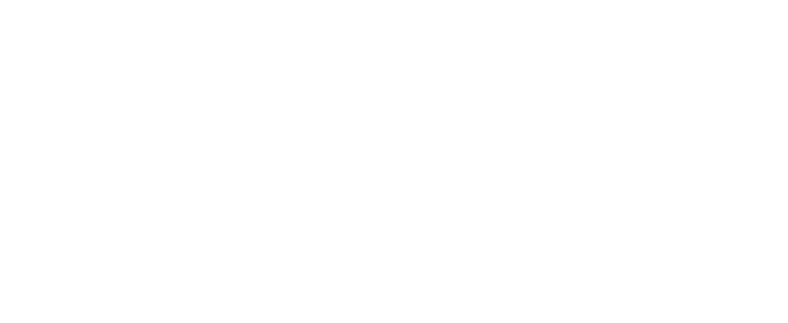 Birchwood_Lexus_Logo_White